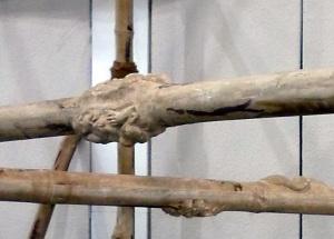 Kallat-Circa detail